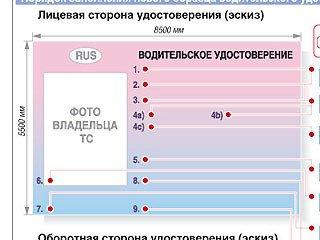 Права нового образца будут выдаваться россиянам уже с 1 марта