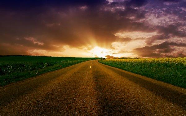 По вине дорог
