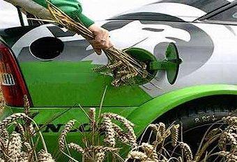 Биотопливо признали вредным для окружающей среды
